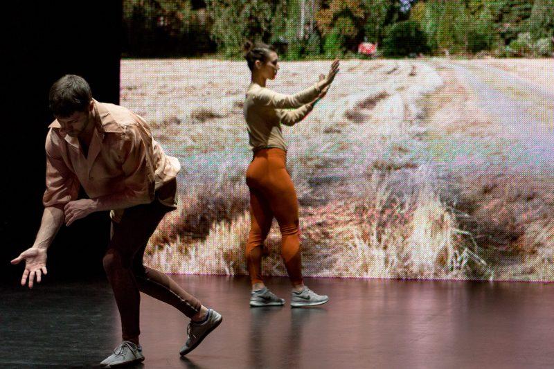 """Vuoden Teatteri valikoitui tällä kertaa tanssipuolelta: """"Rohkea ja ennakkoluuloton edelläkävijä"""""""